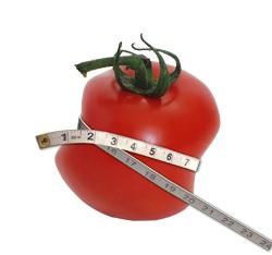 tomatologoSmall
